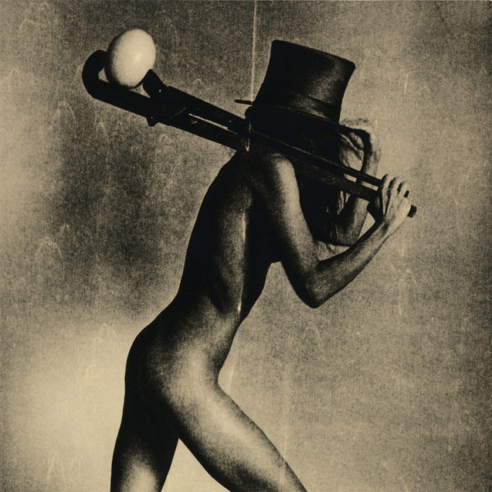 Bild The thief of egg von Sergey Lebedev